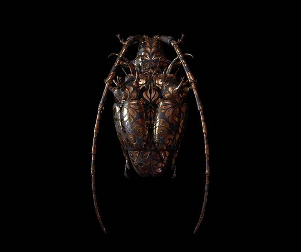 billelis-billy-bogiatzoglou-engraved-entomology-designboom-010