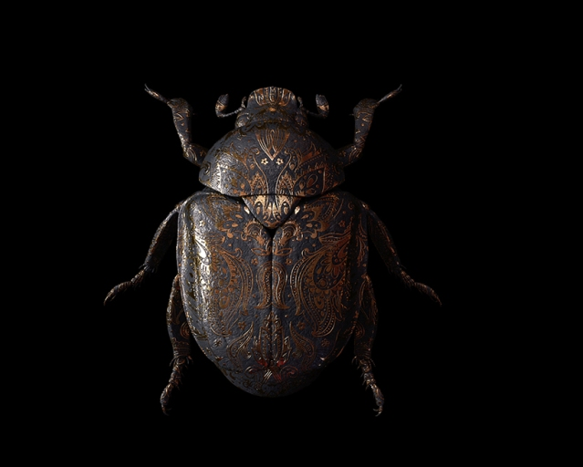 billelis-billy-bogiatzoglou-engraved-entomology-designboom-011