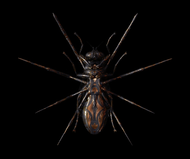 billelis-billy-bogiatzoglou-engraved-entomology-designboom-012