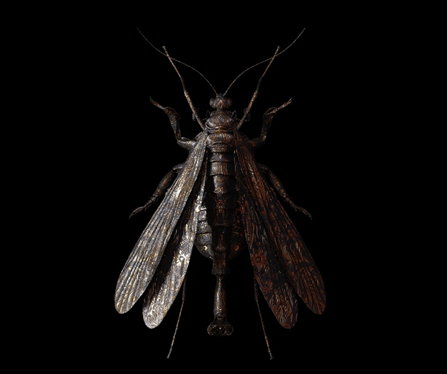 billelis-billy-bogiatzoglou-engraved-entomology-designboom-015