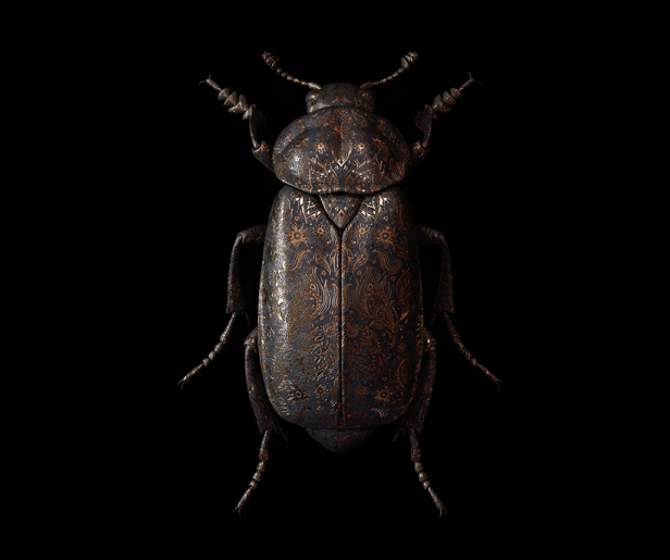 billelis-billy-bogiatzoglou-engraved-entomology-designboom-016