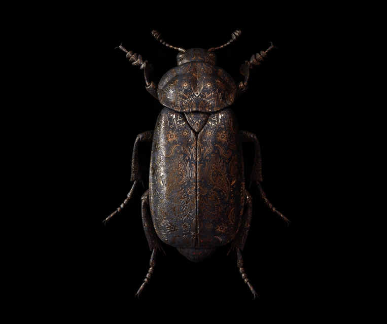 billelis-billy-bogiatzoglou-engraved-entomology-designboom-016