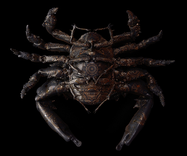 billelis-billy-bogiatzoglou-engraved-entomology-designboom-05