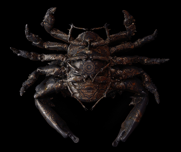 billelis-billy-bogiatzoglou-engraved-entomology-designboom-05