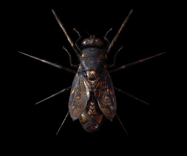 billelis-billy-bogiatzoglou-engraved-entomology-designboom-06