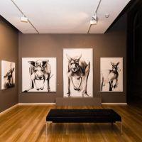 Australia's Michael Chorney unveils portraits of  kangaroos.