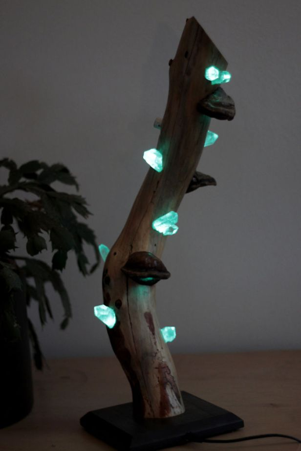 i-create-unique-lamps-out-of-real-mushrooms-and-mountain-crystals-587f44f68df65__700