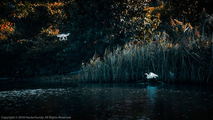 best-drone-photography-2016-skypixel-contest-15-588f2e8842720__880