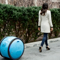 Meet Gita,  a cargo-bot to help carry and deliver all your stuff.