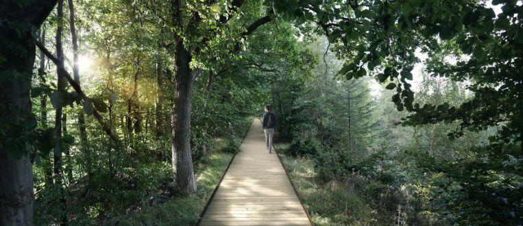 spiraling-treetop-walkway-effekt-denmark-59cb526d13018__880