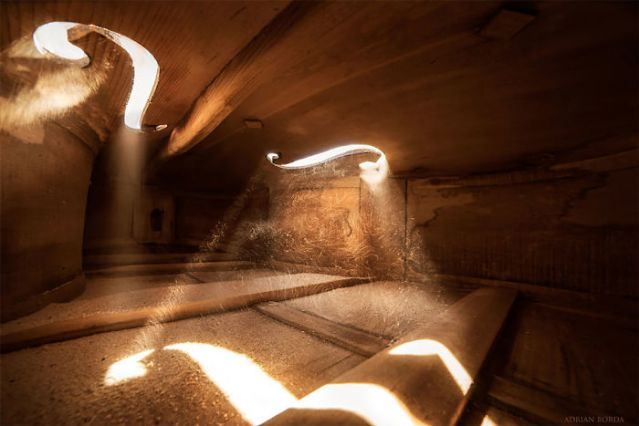 photographs-inside-cello-adrian-borda-24-5be18c2aa137b__700